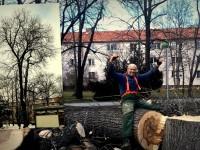 Spílenie Jaseňa nad chodníkom a v blízkosti budovy